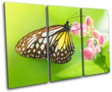 Butterfly Animals - 13-1004(00B)-TR32-LO